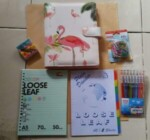 Binder Flamingo