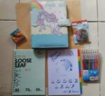Binder Little Poni